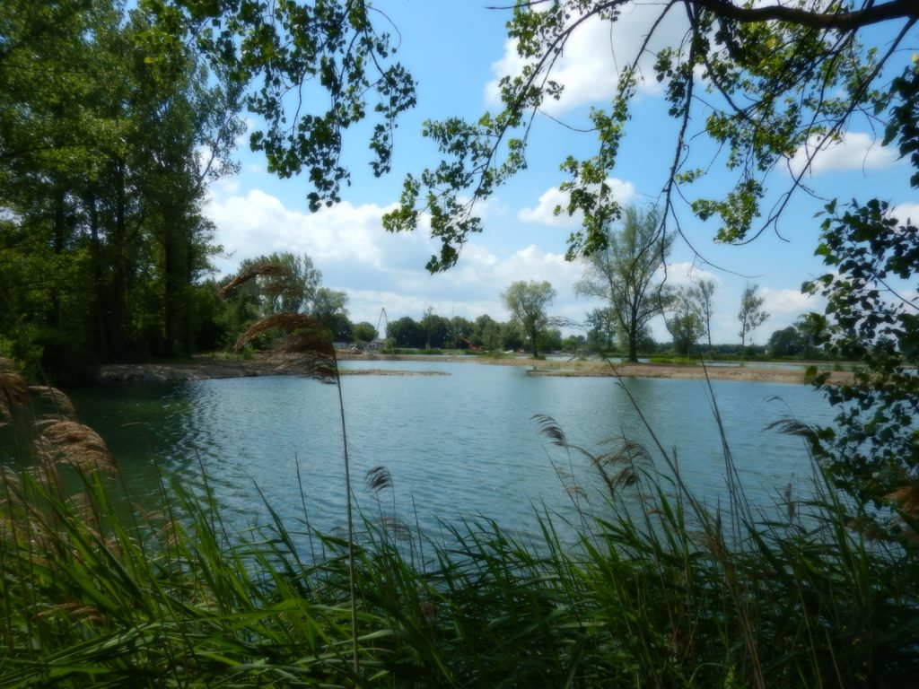 Kompleksowa przebudowa stawów rybnych-BUDOWA-WAKEPARKU_3